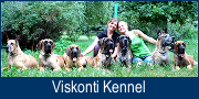 """Viskonti"" Kennel"