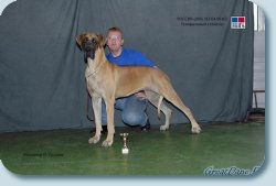"International Dog Show ""Russia 2005"" - CACIB, BOB"