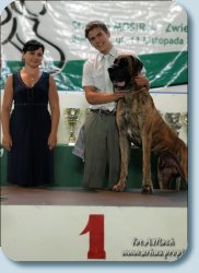 BIG-1, BIS-2 (The competition Young handler. CACIB, Poland, 2011)